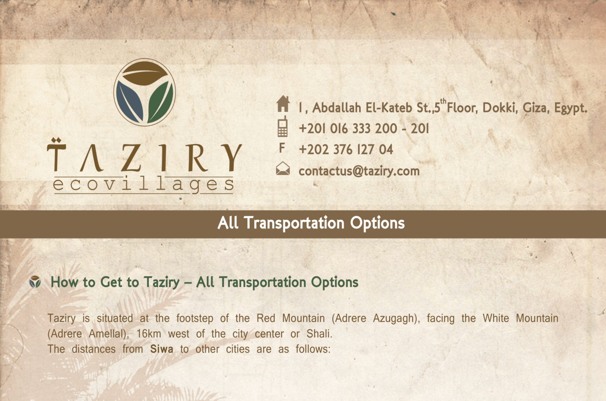 all_transportation_options